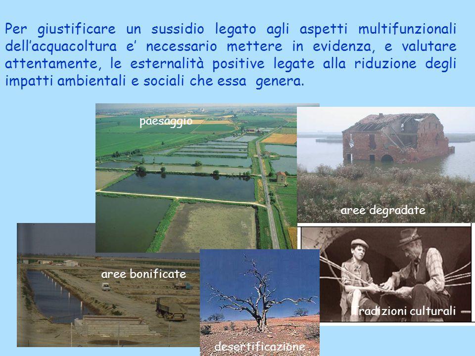 Accanto agli effetti positivi vanno considerate, allo stesso modo, le esternalità negative legate allattività di allevamento, rappresentate, soprattutto, dallinquinamento dellaria e delle acque.