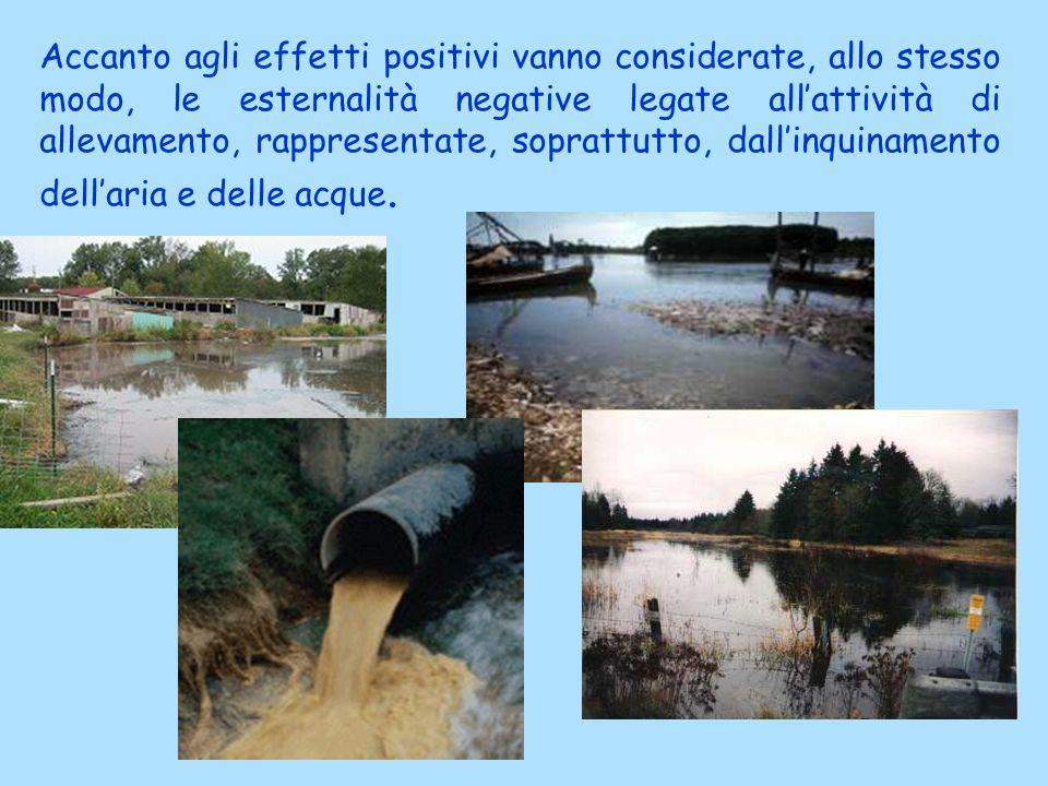 Accanto agli effetti positivi vanno considerate, allo stesso modo, le esternalità negative legate allattività di allevamento, rappresentate, soprattut