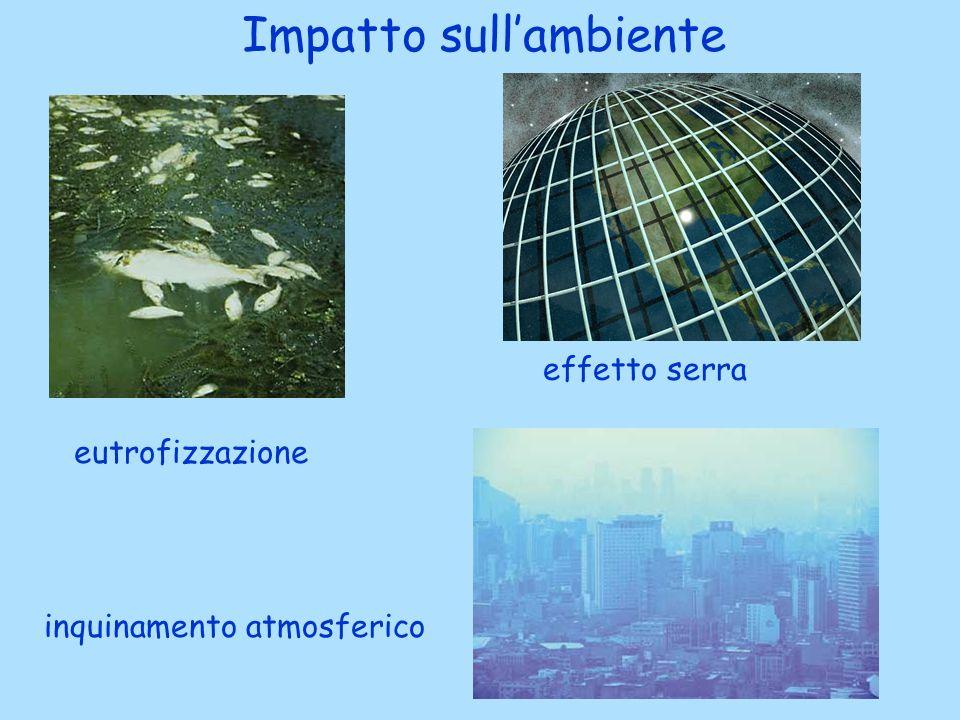 Impatto sullambiente eutrofizzazione effetto serra inquinamento atmosferico