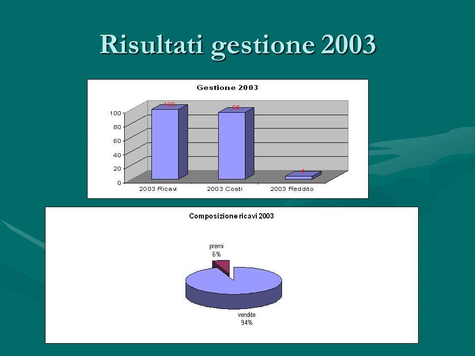 Risultati gestione 2003
