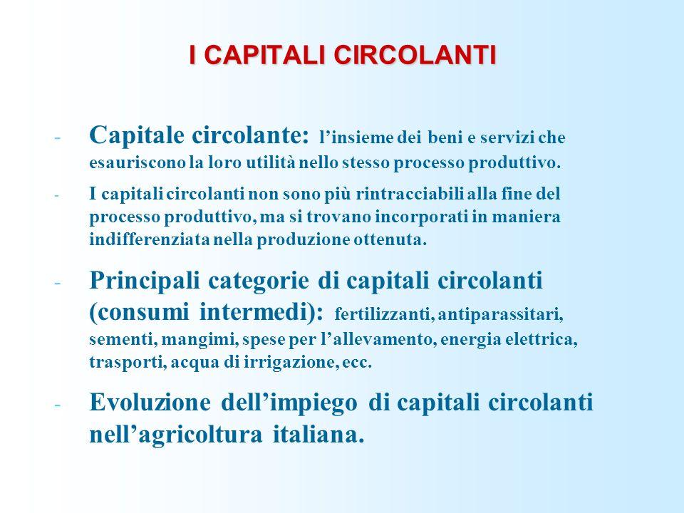 I CAPITALI CIRCOLANTI - Capitale circolante: linsieme dei beni e servizi che esauriscono la loro utilità nello stesso processo produttivo. - I capital