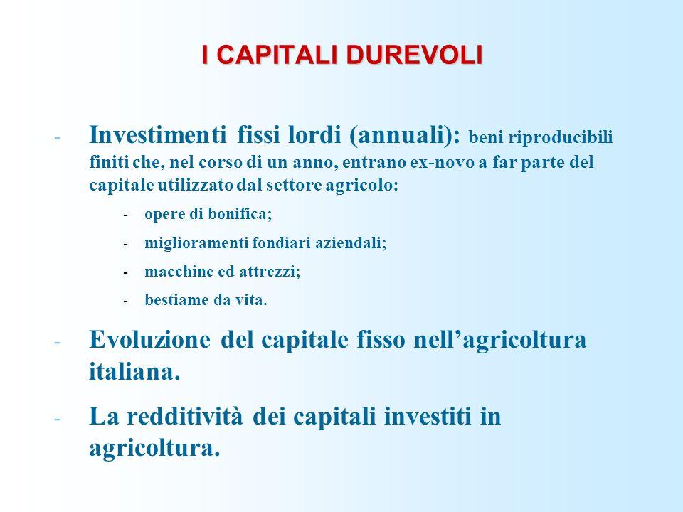 I CAPITALI DUREVOLI - Investimenti fissi lordi (annuali): beni riproducibili finiti che, nel corso di un anno, entrano ex-novo a far parte del capital