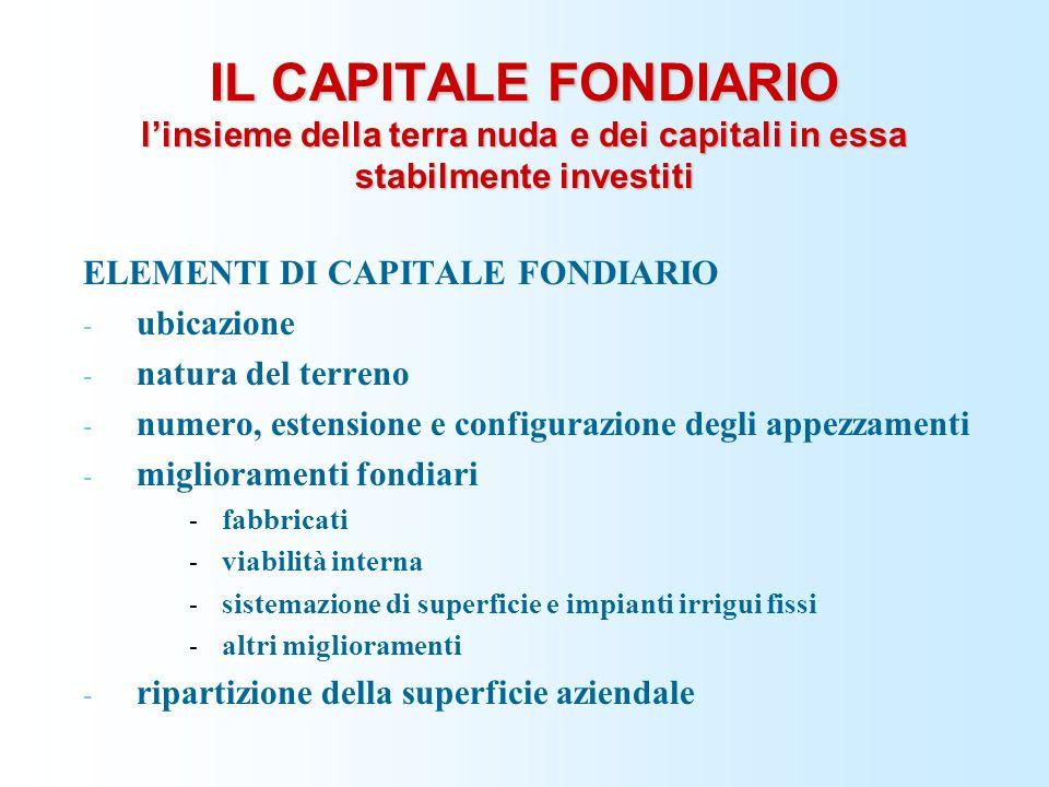 IL CAPITALE FONDIARIO linsieme della terra nuda e dei capitali in essa stabilmente investiti ELEMENTI DI CAPITALE FONDIARIO - ubicazione - natura del