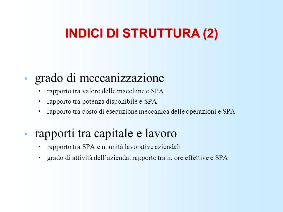 INDICI DI STRUTTURA (2) grado di meccanizzazione rapporto tra valore delle macchine e SPA rapporto tra potenza disponibile e SPA rapporto tra costo di