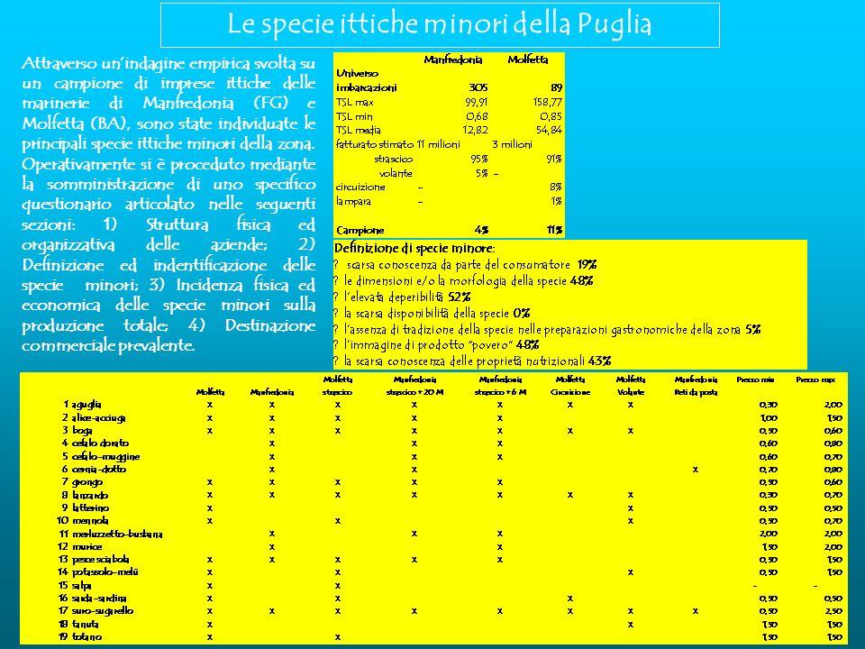 Le specie ittiche minori della Puglia Attraverso unindagine empirica svolta su un campione di imprese ittiche delle marinerie di Manfredonia (FG) e Molfetta (BA), sono state individuate le principali specie ittiche minori della zona.