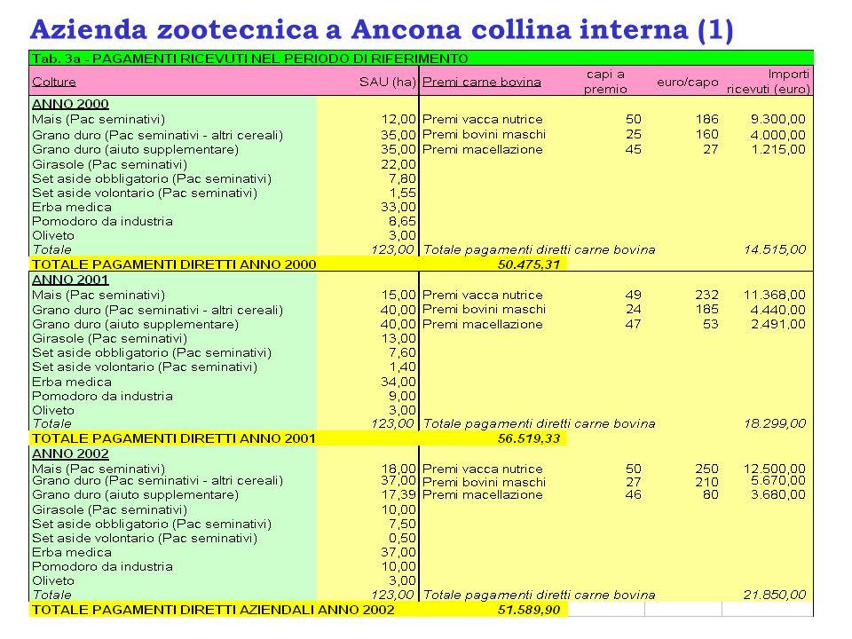 Azienda zootecnica a Ancona collina interna (1)