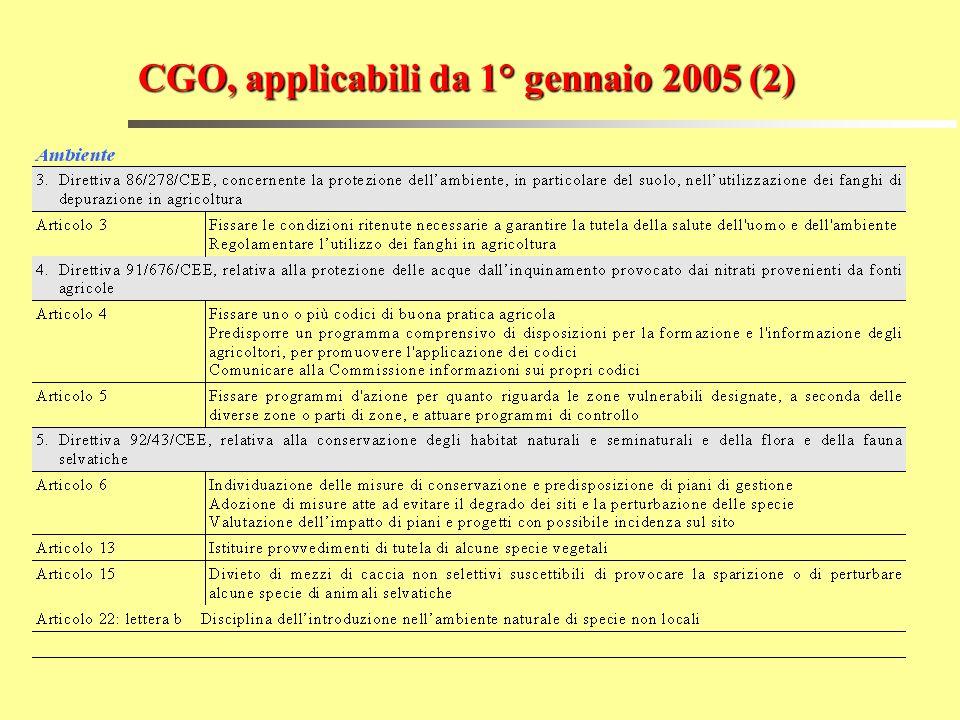 CGO, applicabili da 1° gennaio 2005 (2)