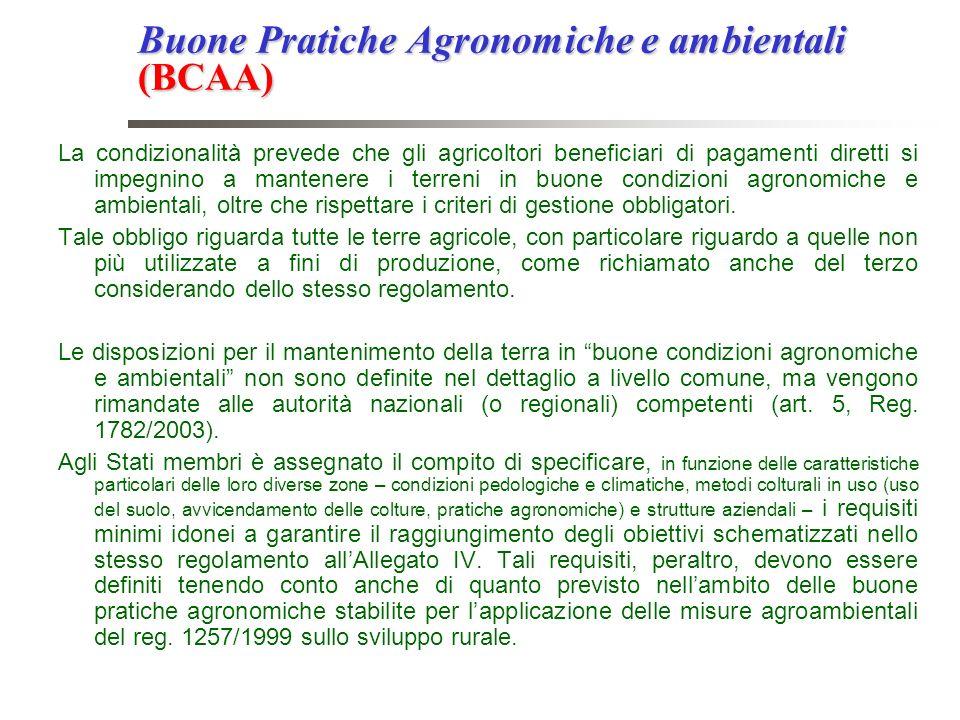Buone Pratiche Agronomiche e ambientali (BCAA) La condizionalità prevede che gli agricoltori beneficiari di pagamenti diretti si impegnino a mantenere