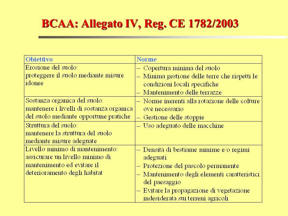 BCAA: Allegato IV, Reg. CE 1782/2003