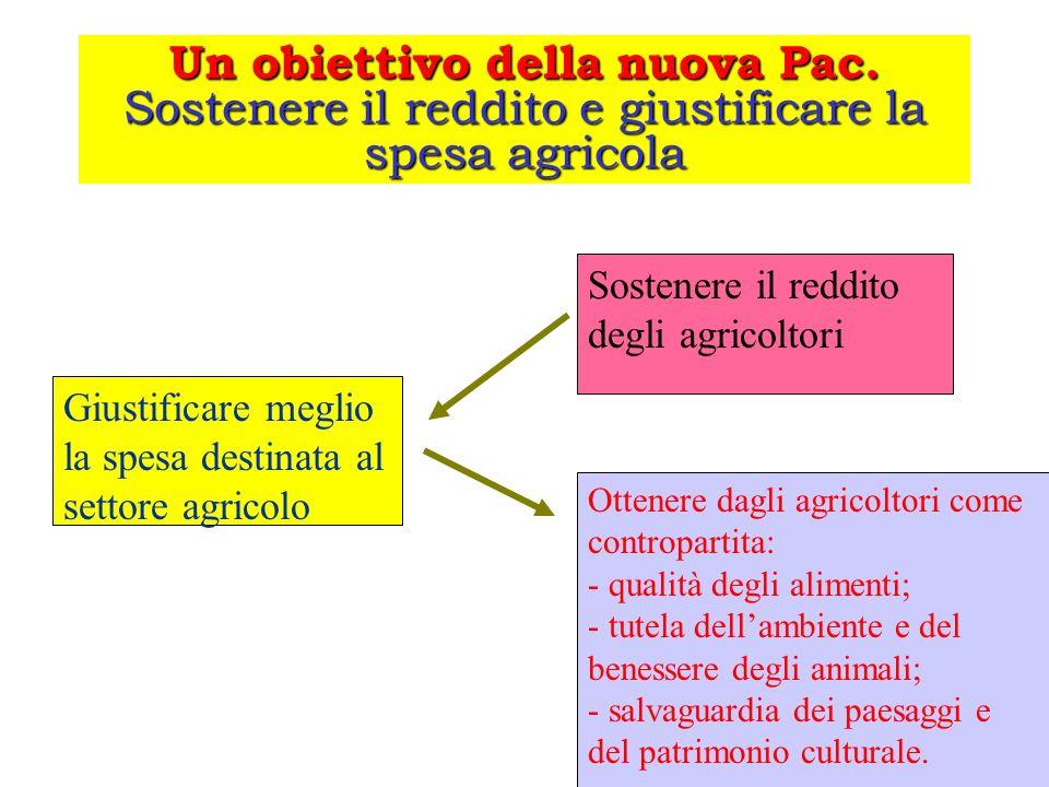 Un obiettivo della nuova Pac. Sostenere il reddito e giustificare la spesa agricola Giustificare meglio la spesa destinata al settore agricolo Sostene