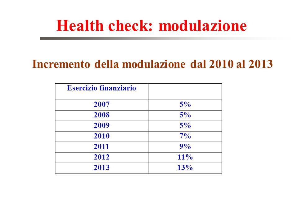 Health check: modulazione Incremento della modulazione dal 2010 al 2013 Esercizio finanziario 20075% 20085% 20095% 20107% 20119% 201211% 201313%