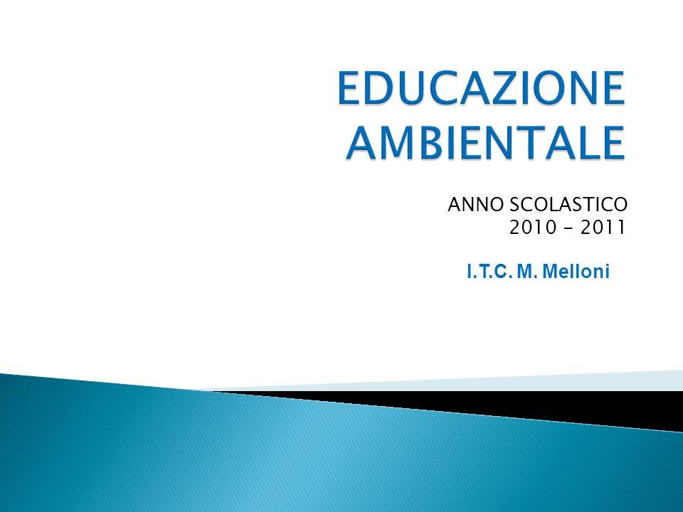 ANNO SCOLASTICO 2010 - 2011 I.T.C. M. Melloni