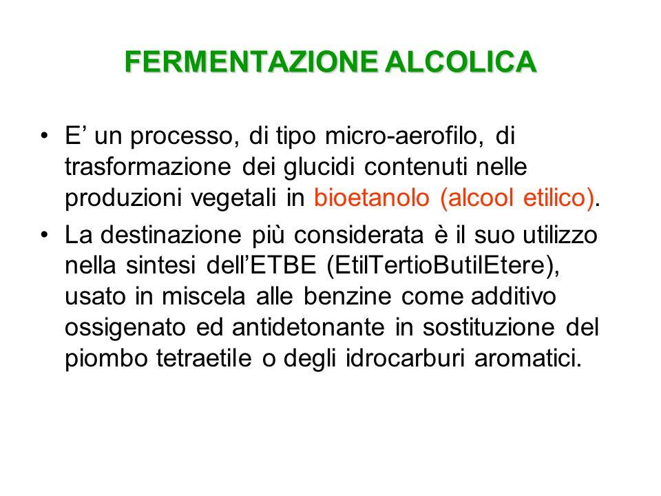 FERMENTAZIONE ALCOLICA E un processo, di tipo micro-aerofilo, di trasformazione dei glucidi contenuti nelle produzioni vegetali in bioetanolo (alcool