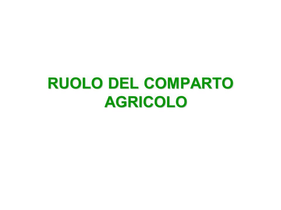 COMPARTO AGRICOLO Il comparto agricolo svolge, e svolgerà, un ruolo sempre più preponderante nella produzione di combustibili da biomassa Nel panorama delle imprese che esprimono al meglio la multifunzionalità dellagricoltura ben rientrano le: IMPRESE AGRO-ENERGETICHE