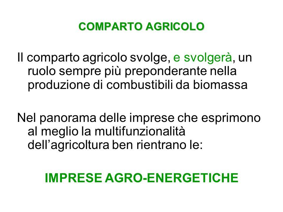 COMPARTO AGRICOLO Il comparto agricolo svolge, e svolgerà, un ruolo sempre più preponderante nella produzione di combustibili da biomassa Nel panorama