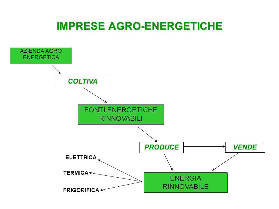 IMPRESE AGRO-ENERGETICHE MODELLI DI IMPRESE AGRI-ENERGETICHE AZIENDE AGRICOLE CHE COLTIVANO LE MATERIE PRIME DESTINATE A PRODURRE ENERGIA.
