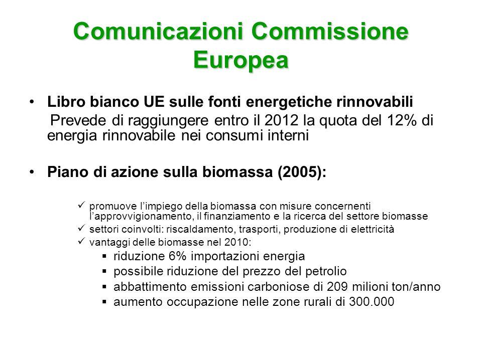 Comunicazioni Commissione Europea Strategia UE biocarburanti (2006) il settore dei trasporti produce il 21% delle emissioni di gas serra in Europa vantaggi biocarburanti: riduzione emissioni gas serra decarbonizzazione dei combustibili per il trasporto sviluppo di sostituti a lungo termine per il petrolio Libro Verde dellUE 2006 obiettivi: riduzione domanda di energia, maggiore ricorso a fonti energetiche alternative, diversificazione delle fonti energetiche, intensificazione della cooperazione internazionale.