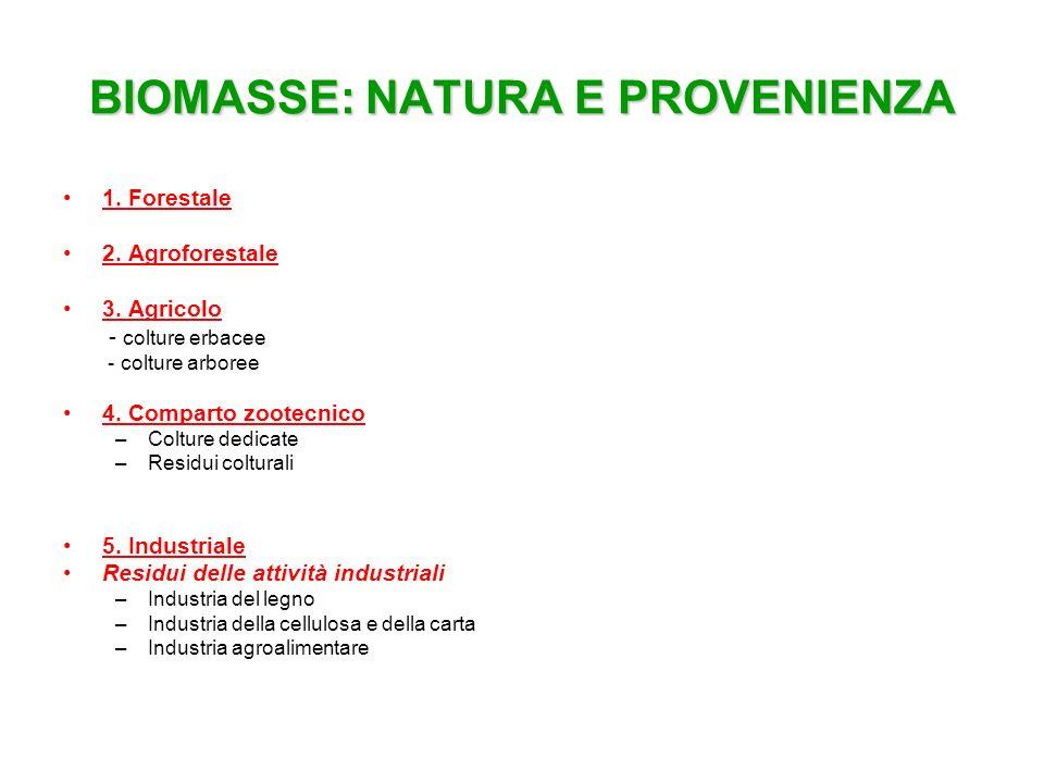 BIOMASSE: NATURA E PROVENIENZA 1. Forestale 2. Agroforestale 3. Agricolo - colture erbacee - colture arboree 4. Comparto zootecnico –Colture dedicate