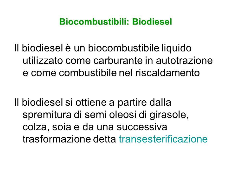 Biocombustibili: Biodiesel Il biodiesel è un biocombustibile liquido utilizzato come carburante in autotrazione e come combustibile nel riscaldamento