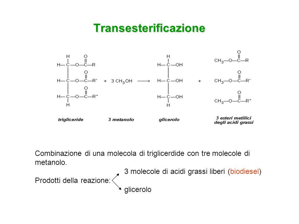 Transesterificazione Combinazione di una molecola di triglicerdide con tre molecole di metanolo. 3 molecole di acidi grassi liberi (biodiesel) Prodott