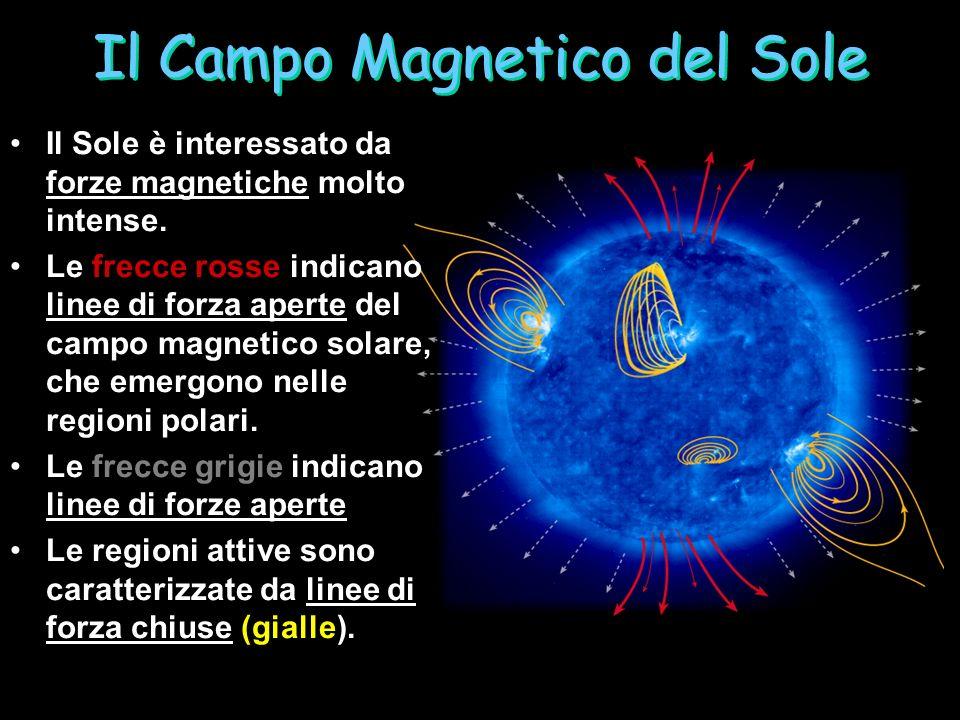 Il Campo Magnetico del Sole Il Sole è interessato da forze magnetiche molto intense.