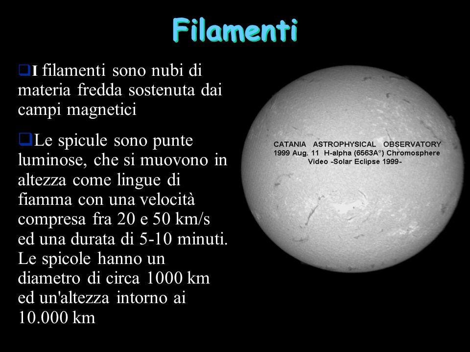 Filamenti I filamenti sono nubi di materia fredda sostenuta dai campi magnetici Le spicule sono punte luminose, che si muovono in altezza come lingue di fiamma con una velocità compresa fra 20 e 50 km/s ed una durata di 5-10 minuti.