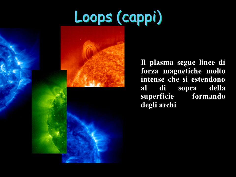Loops (cappi) Il plasma segue linee di forza magnetiche molto intense che si estendono al di sopra della superficie formando degli archi