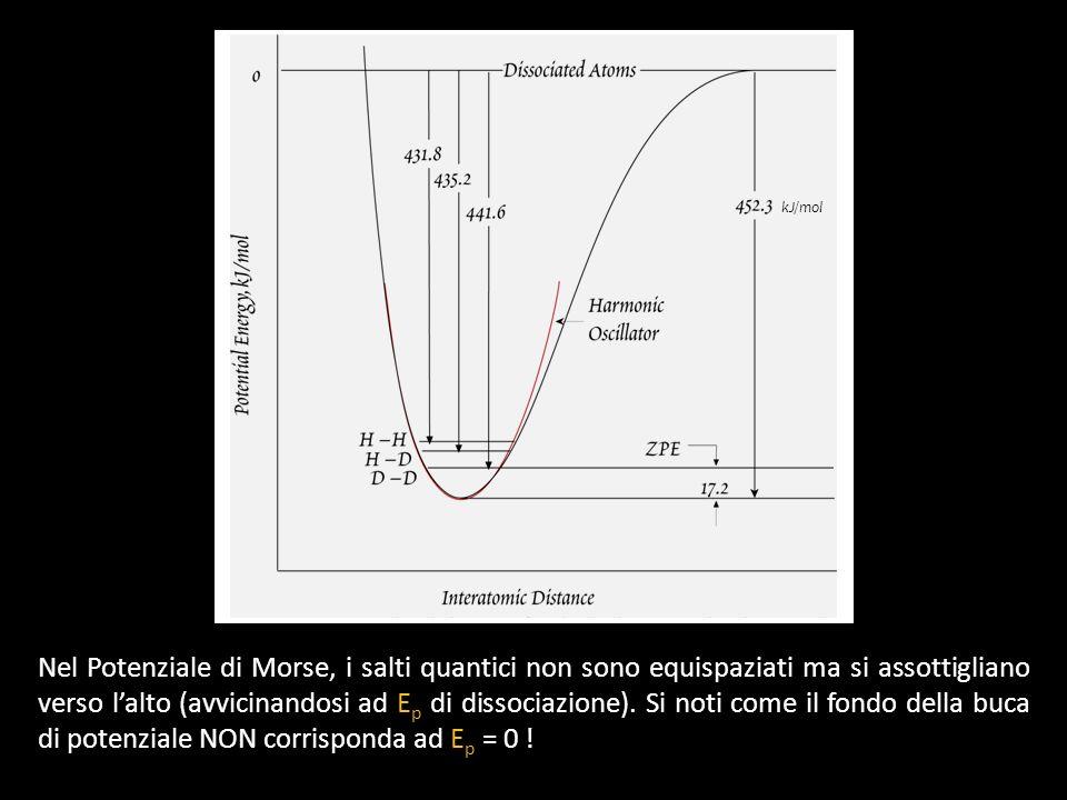 kJ/mol Nel Potenziale di Morse, i salti quantici non sono equispaziati ma si assottigliano verso lalto (avvicinandosi ad E p di dissociazione). Si not