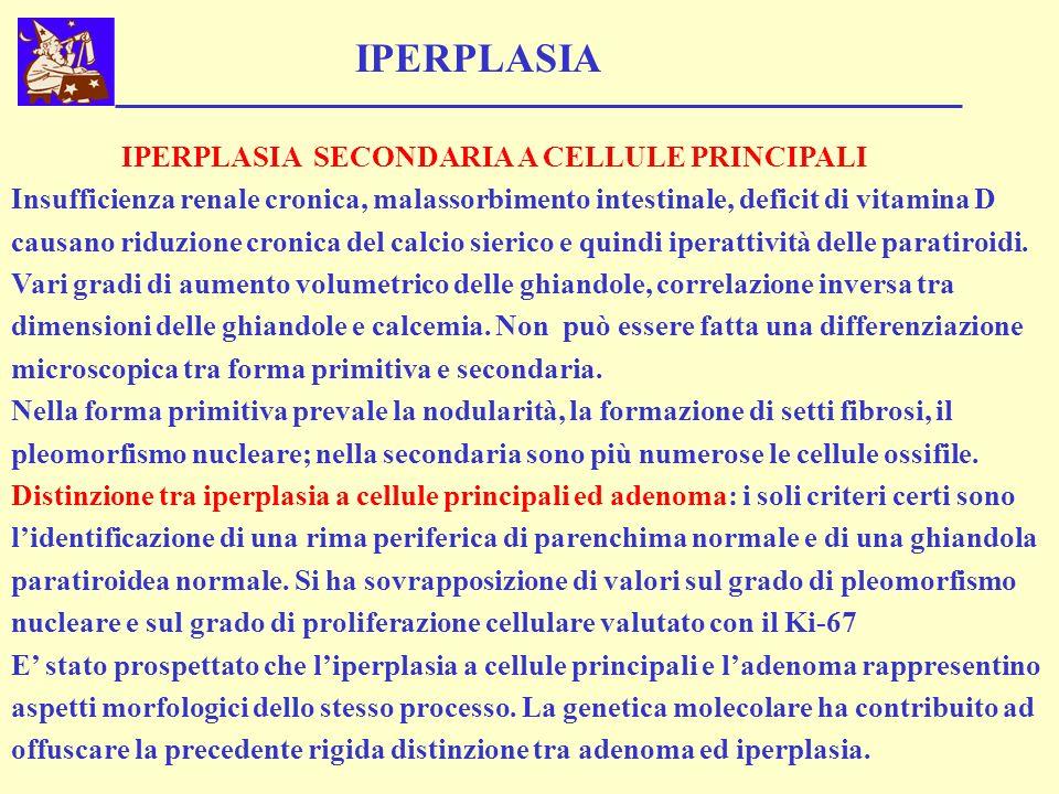 IPERPLASIA SECONDARIA A CELLULE PRINCIPALI Insufficienza renale cronica, malassorbimento intestinale, deficit di vitamina D causano riduzione cronica