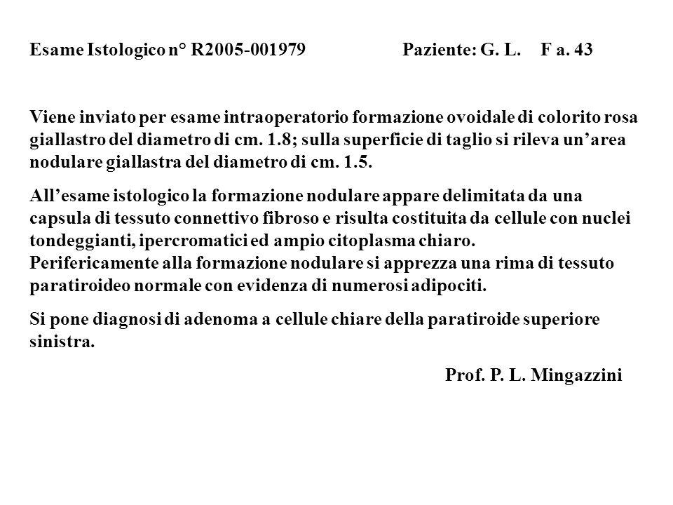 Esame Istologico n° R2005-001979 Paziente: G. L. F a. 43 Viene inviato per esame intraoperatorio formazione ovoidale di colorito rosa giallastro del d