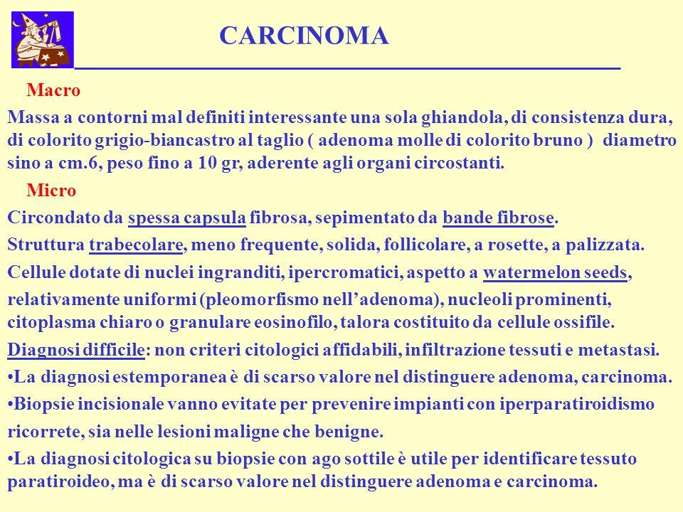CARCINOMA Macro Massa a contorni mal definiti interessante una sola ghiandola, di consistenza dura, di colorito grigio-biancastro al taglio ( adenoma