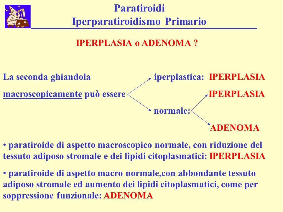 Paratiroidi Iperparatiroidismo Primario IPERPLASIA o ADENOMA ? La seconda ghiandola iperplastica: IPERPLASIA macroscopicamente può essere IPERPLASIA n