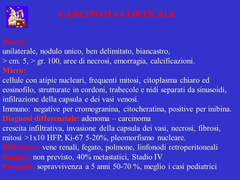 CARCINOMA CORTICALE Macro: unilaterale, nodulo unico, ben delimitato, biancastro, > cm. 5, > gr. 100, aree di necrosi, emorragia, calcificazioni. Micr