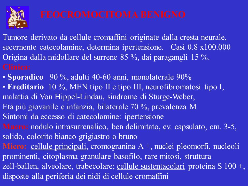 FEOCROMOCITOMA MALIGNO 10 % dei feocromocitomi sono maligni Clinica: Sporadico 90 %, Ereditario 10 % Sintomi da eccesso di catecolamine: ipertensione più accentuata Macro: noduli più grandi, >cm.