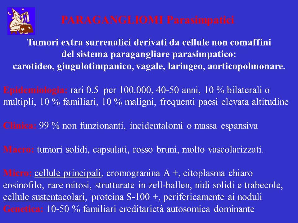 PARAGANGLIOMI Parasimpatici Tumori extra surrenalici derivati da cellule non comaffini del sistema paragangliare parasimpatico: carotideo, giugulotimp