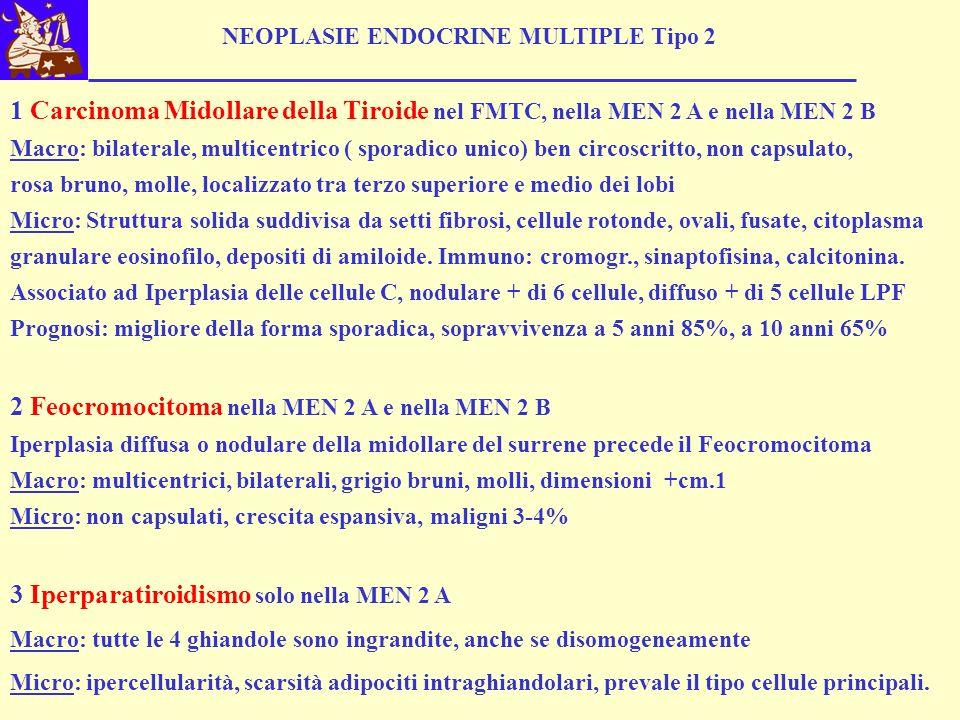 NEOPLASIE ENDOCRINE MULTIPLE Tipo 2 1 Carcinoma Midollare della Tiroide nel FMTC, nella MEN 2 A e nella MEN 2 B Macro: bilaterale, multicentrico ( spo
