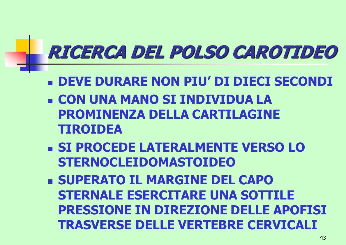 43 RICERCA DEL POLSO CAROTIDEO DEVE DURARE NON PIU DI DIECI SECONDI CON UNA MANO SI INDIVIDUA LA PROMINENZA DELLA CARTILAGINE TIROIDEA SI PROCEDE LATE