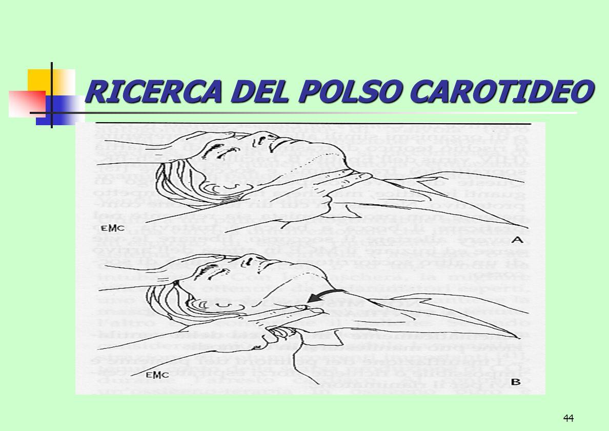 44 RICERCA DEL POLSO CAROTIDEO