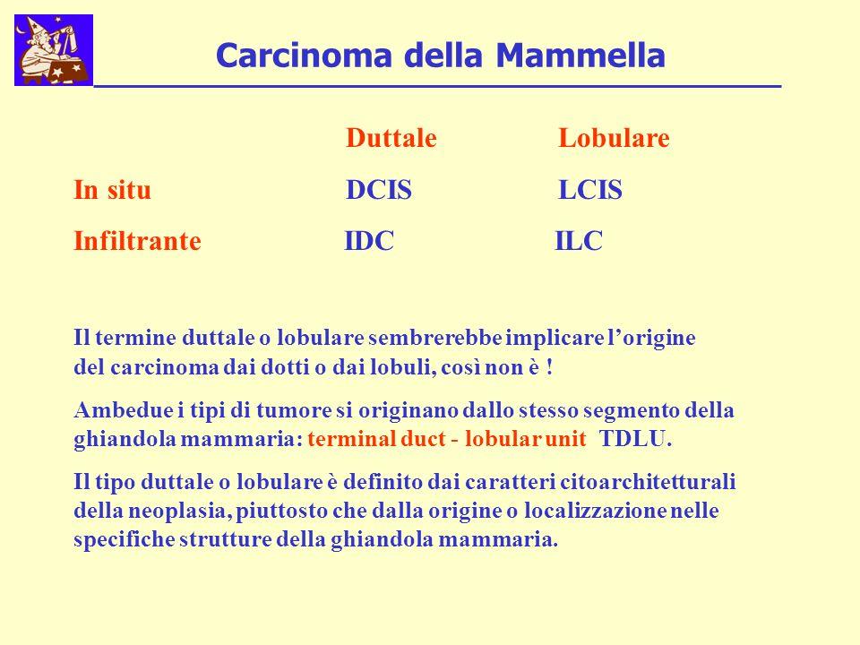 Carcinoma della Mammella Duttale Lobulare In situ DCIS LCIS Infiltrante IDC ILC Il termine duttale o lobulare sembrerebbe implicare lorigine del carcinoma dai dotti o dai lobuli, così non è .