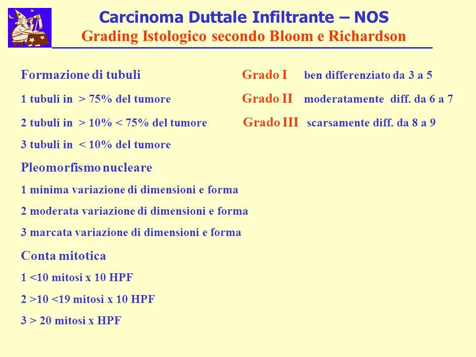 Carcinoma Duttale Infiltrante – NOS Grading Istologico secondo Bloom e Richardson Formazione di tubuli Grado I ben differenziato da 3 a 5 1 tubuli in > 75% del tumore Grado II moderatamente diff.