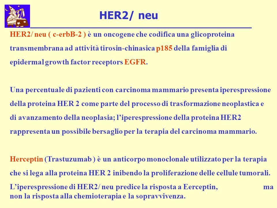 HER2/ neu ( c-erbB-2 ) è un oncogene che codifica una glicoproteina transmembrana ad attività tirosin-chinasica p185 della famiglia di epidermal growth factor receptors EGFR.