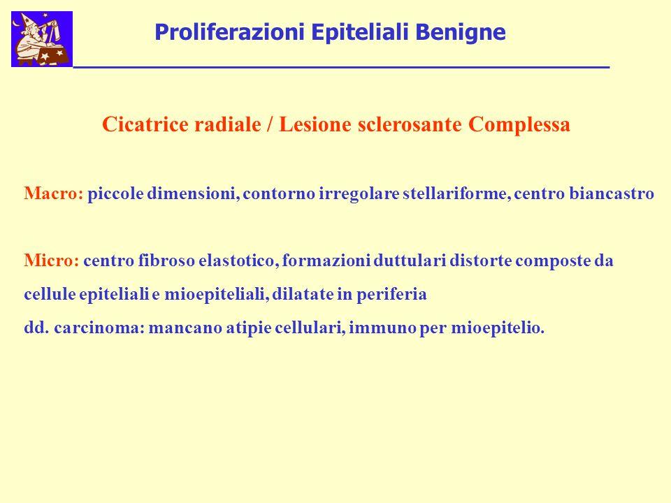 Proliferazioni Epiteliali Benigne Cicatrice radiale / Lesione sclerosante Complessa Macro: piccole dimensioni, contorno irregolare stellariforme, cent