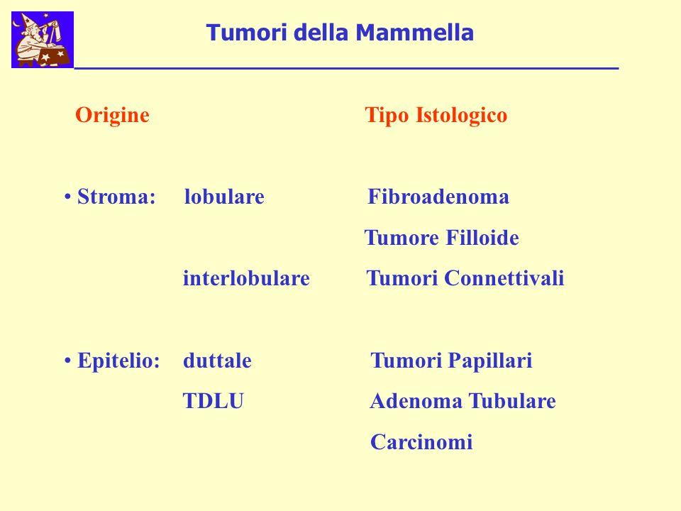 Tumori della Mammella Origine Tipo Istologico Stroma: lobulare Fibroadenoma Tumore Filloide interlobulare Tumori Connettivali Epitelio: duttale Tumori Papillari TDLU Adenoma Tubulare Carcinomi