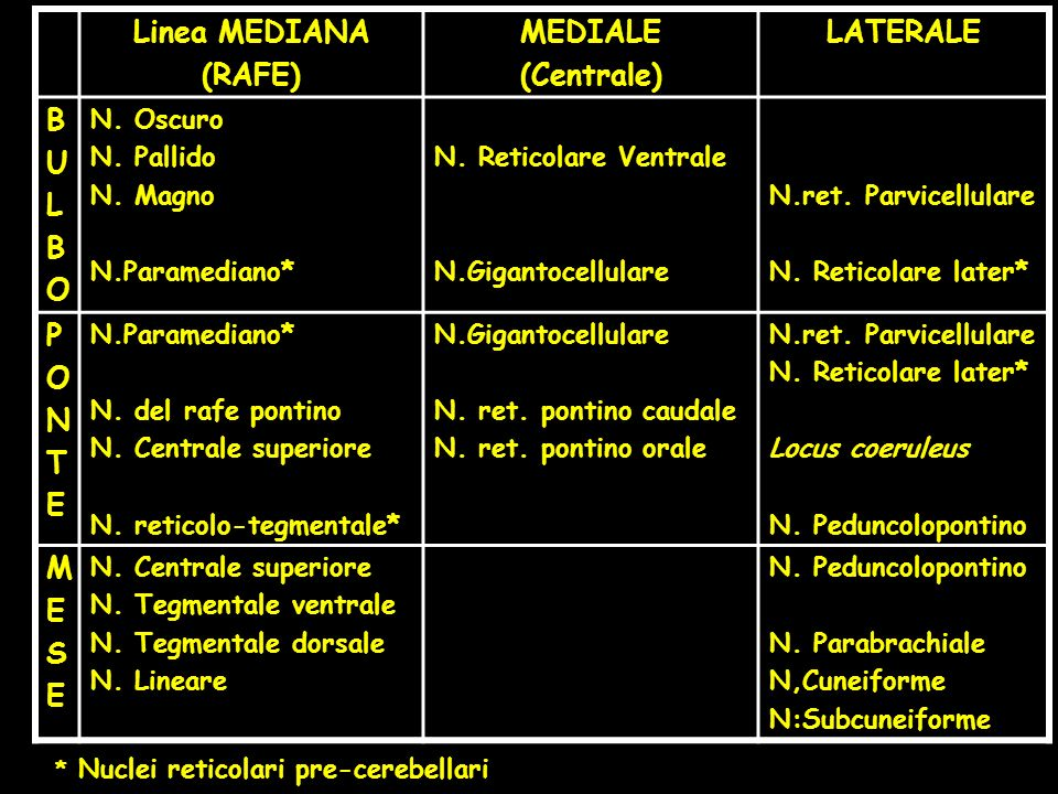 Linea MEDIANA (RAFE) MEDIALE (Centrale) LATERALE BULBOBULBO N. Oscuro N. Pallido N. Magno N.Paramediano* N. Reticolare Ventrale N.Gigantocellulare N.r
