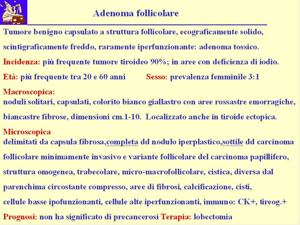 Esame Istologico n° 260.05 Paziente B.F.F a.