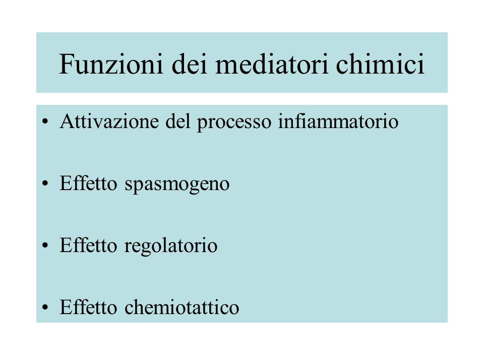 Funzioni dei mediatori chimici Attivazione del processo infiammatorio Effetto spasmogeno Effetto regolatorio Effetto chemiotattico