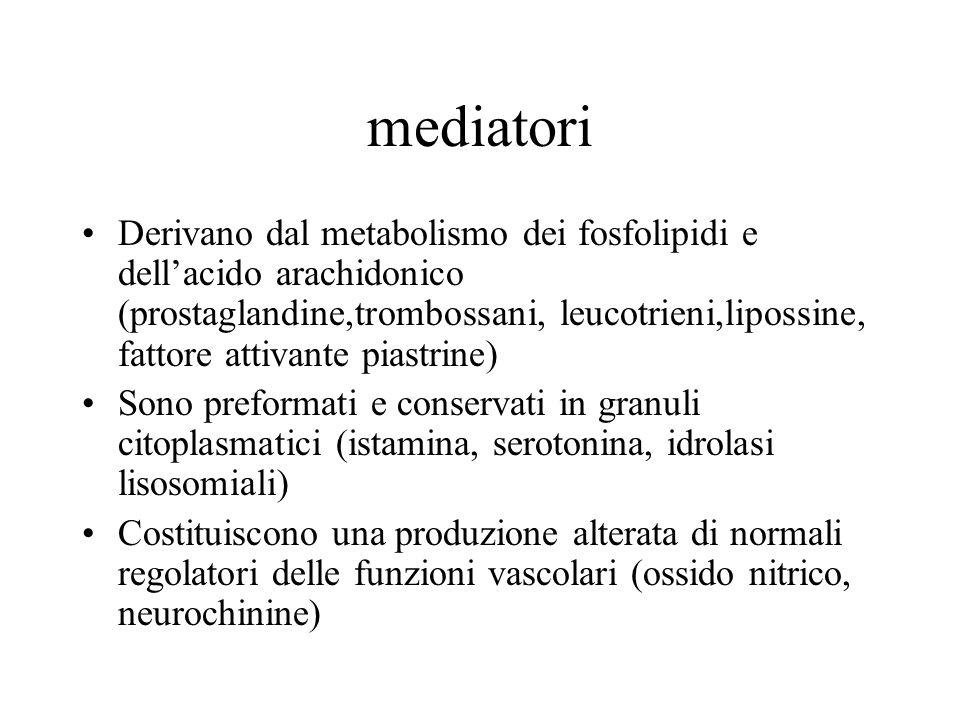 mediatori Derivano dal metabolismo dei fosfolipidi e dellacido arachidonico (prostaglandine,trombossani, leucotrieni,lipossine, fattore attivante pias