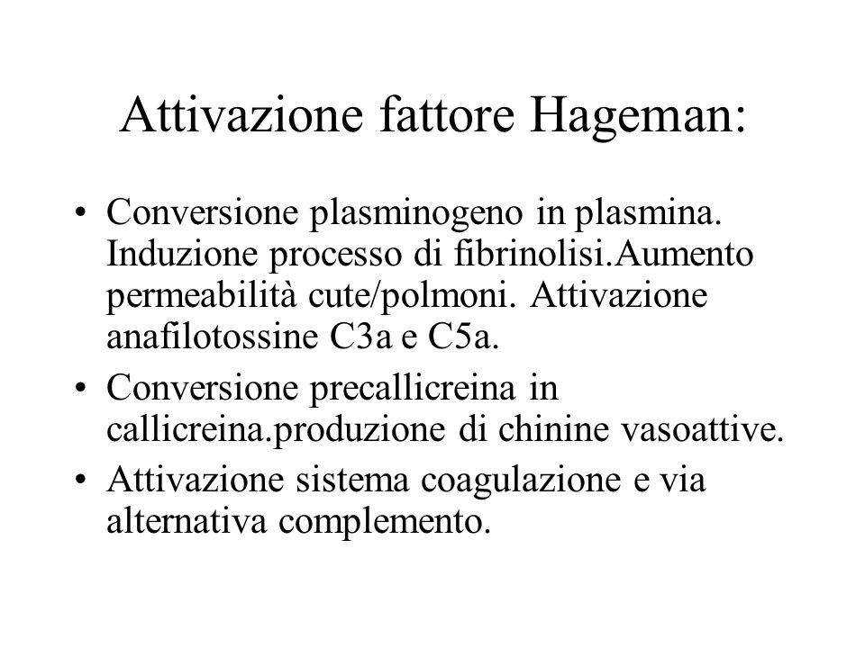 Attivazione fattore Hageman: Conversione plasminogeno in plasmina. Induzione processo di fibrinolisi.Aumento permeabilità cute/polmoni. Attivazione an