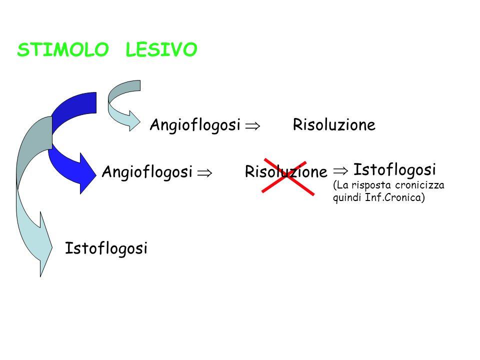 STIMOLO LESIVO Istoflogosi (La risposta cronicizza quindi Inf.Cronica) Angioflogosi Risoluzione Istoflogosi