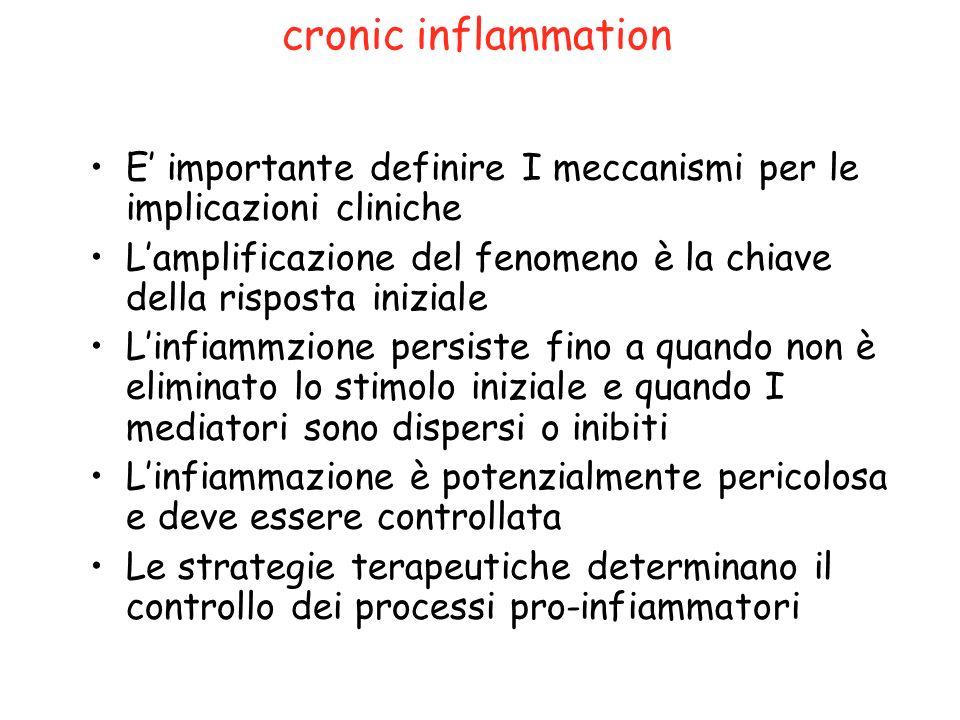 cronic inflammation E importante definire I meccanismi per le implicazioni cliniche Lamplificazione del fenomeno è la chiave della risposta iniziale L